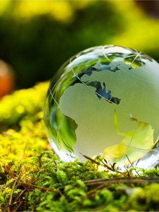 Glass globe of europe and africa on green forest background